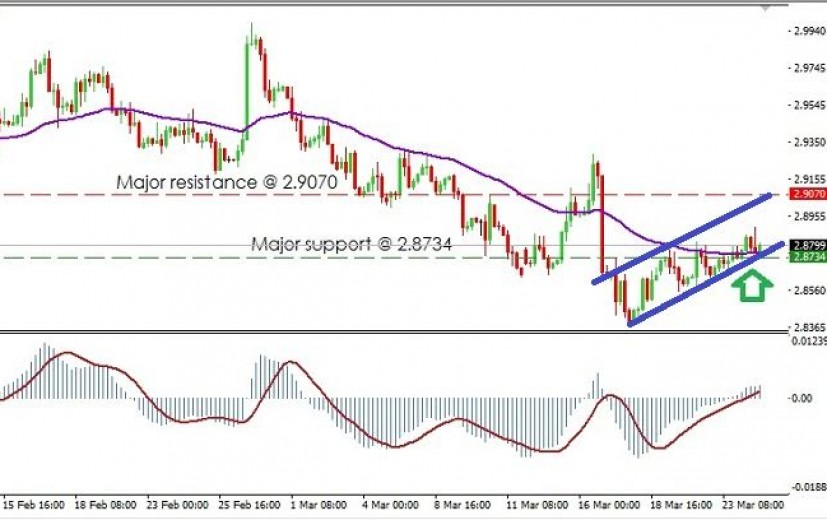 USD/TRY Pair: March 25th 2016