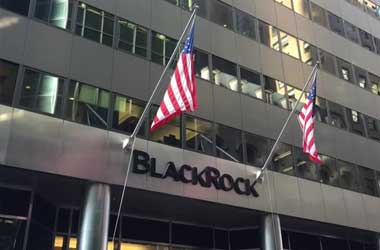 BlackRock Targets Eco Friendly Companies For Major Investments