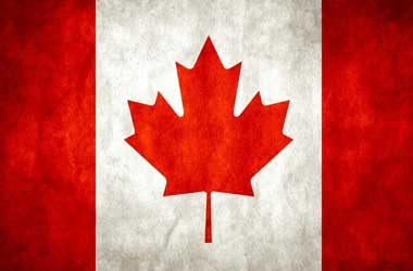Canadian Investors Want Regulatory Measures For The Market